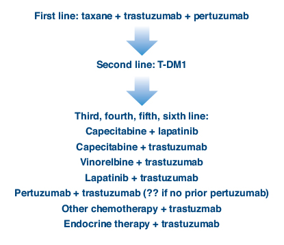Optimizing Anti Her2 Treatment For Metastatic Breast Cancer In 2013